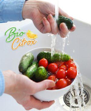 producto-inocuidad-bio-citrox-mexico